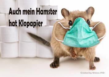 Toilet paper hamster