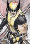 Marvel Universe - Wolverine Sketch Art Card