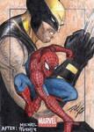 MU - Spider-Man-Wolverine Sketch Art Card