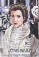 Star Wars Illustrated: TESB - Leia by DenaeFrazierStudios