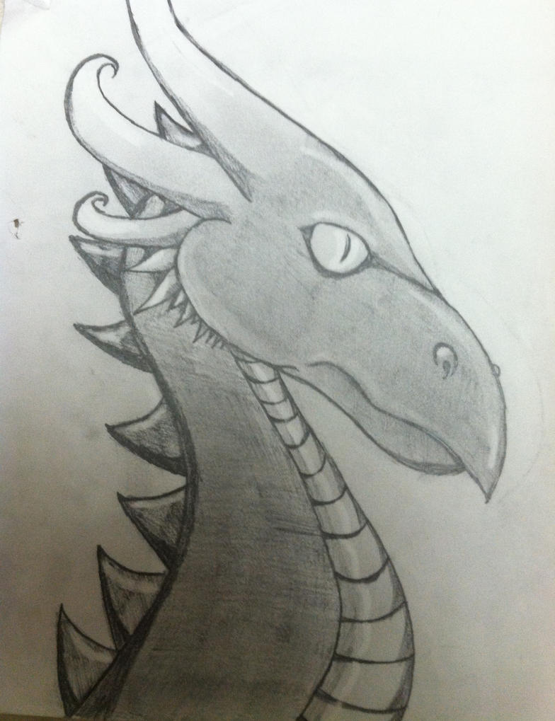 Pencil Sketch of a Dragon Head by draggydrago on DeviantArt