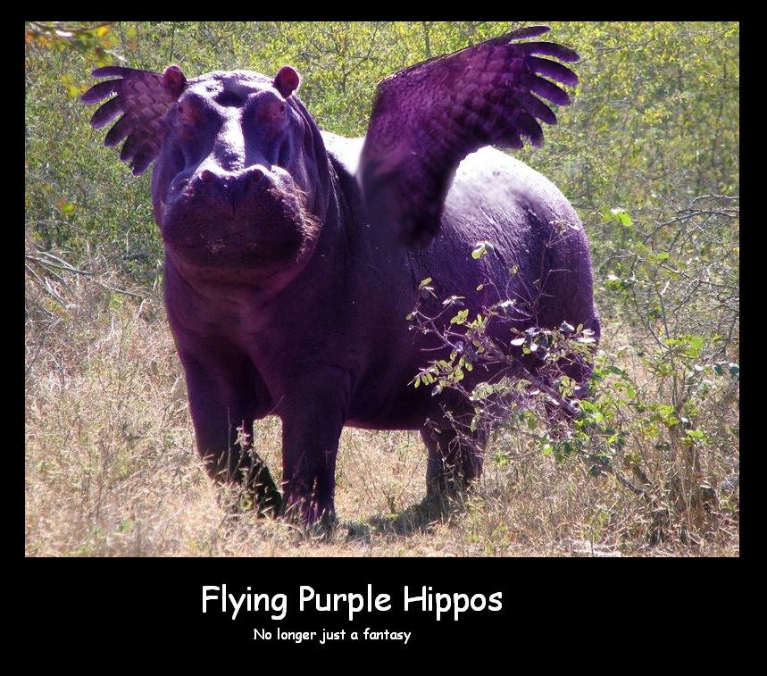 http://fc02.deviantart.net/fs71/f/2010/340/4/c/purple_hippo_by_waterfaeriex99-d34d3lb.jpg