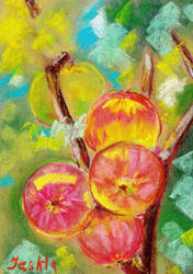 Colorful apple on green background by pastel