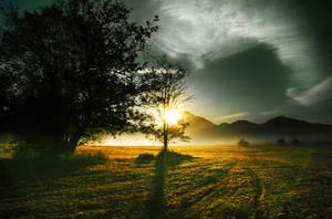 autumn morning II by CaveCanem42