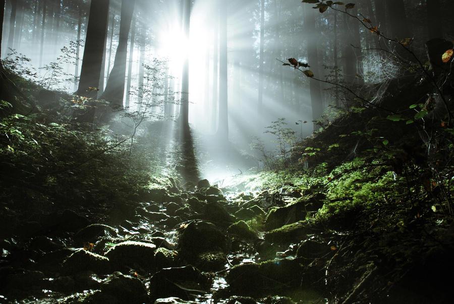 Licht und Schatten by CaveCanem42