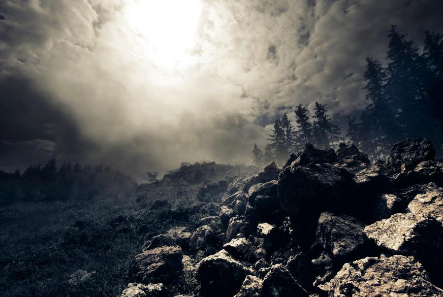 der Sonne entgegen by CaveCanem42