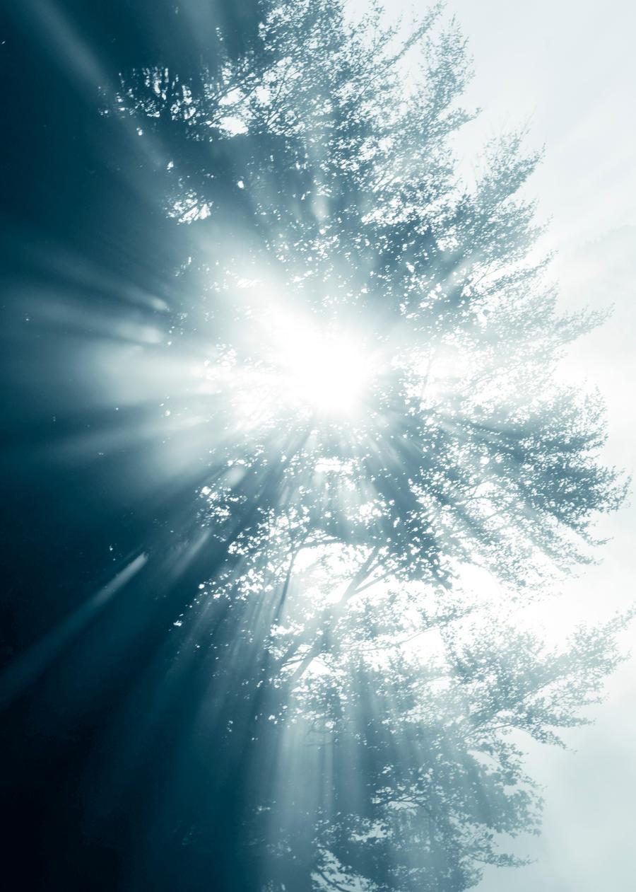 licht by CaveCanem42