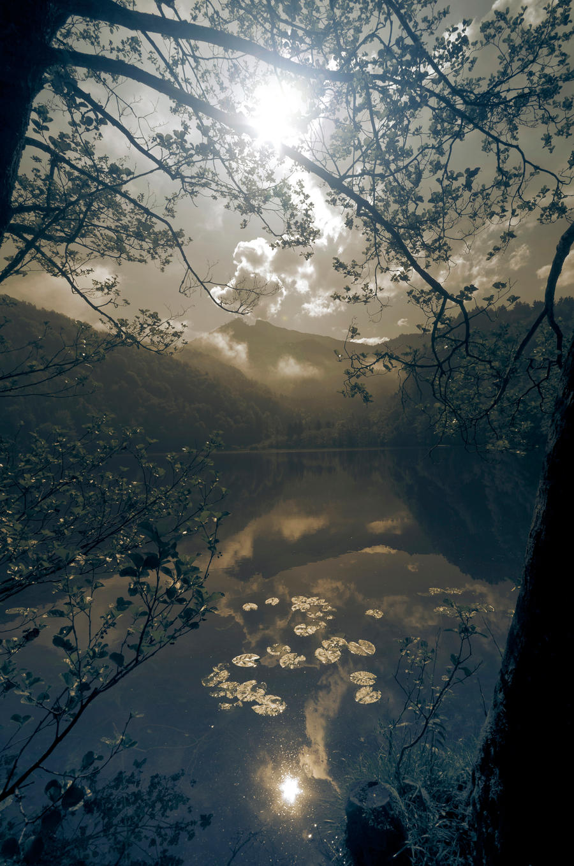 come with me by CaveCanem42