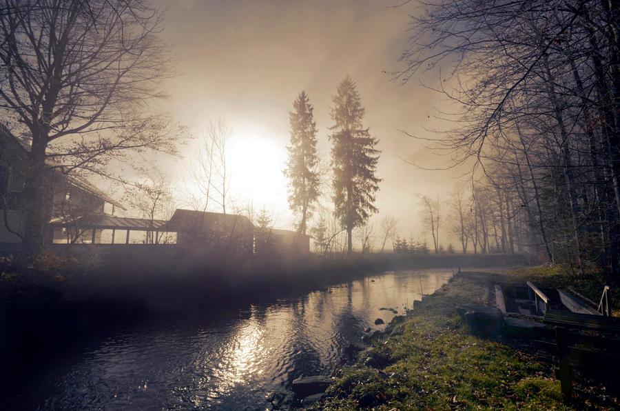 Novemberlicht by CaveCanem42