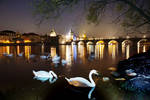 Ghost Swans