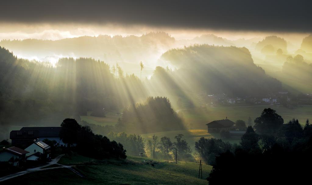 Daybreak by CaveCanem42