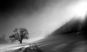 Shade Border by CaveCanem42
