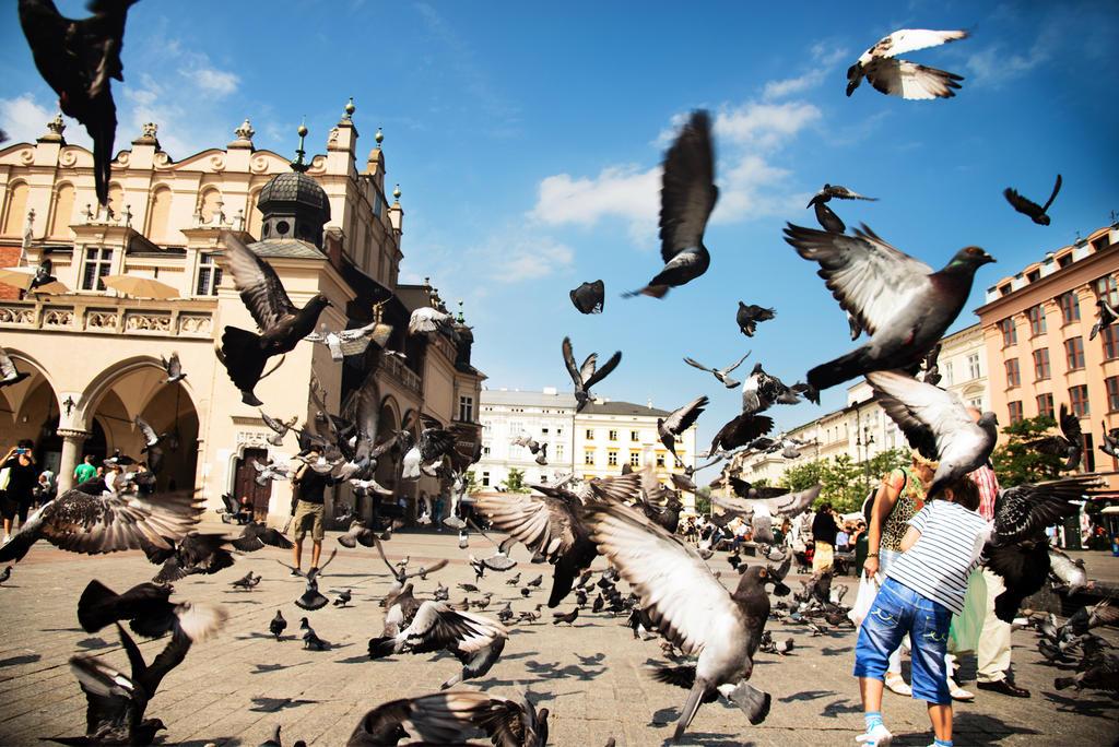The Birds by CaveCanem42