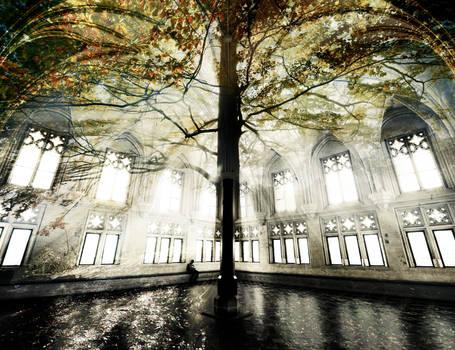 Autumn Refectory