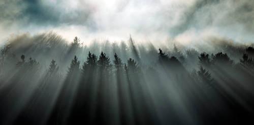 Incidence of Light by CaveCanem42