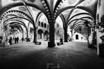 Galleria dell'Accademia by CaveCanem42
