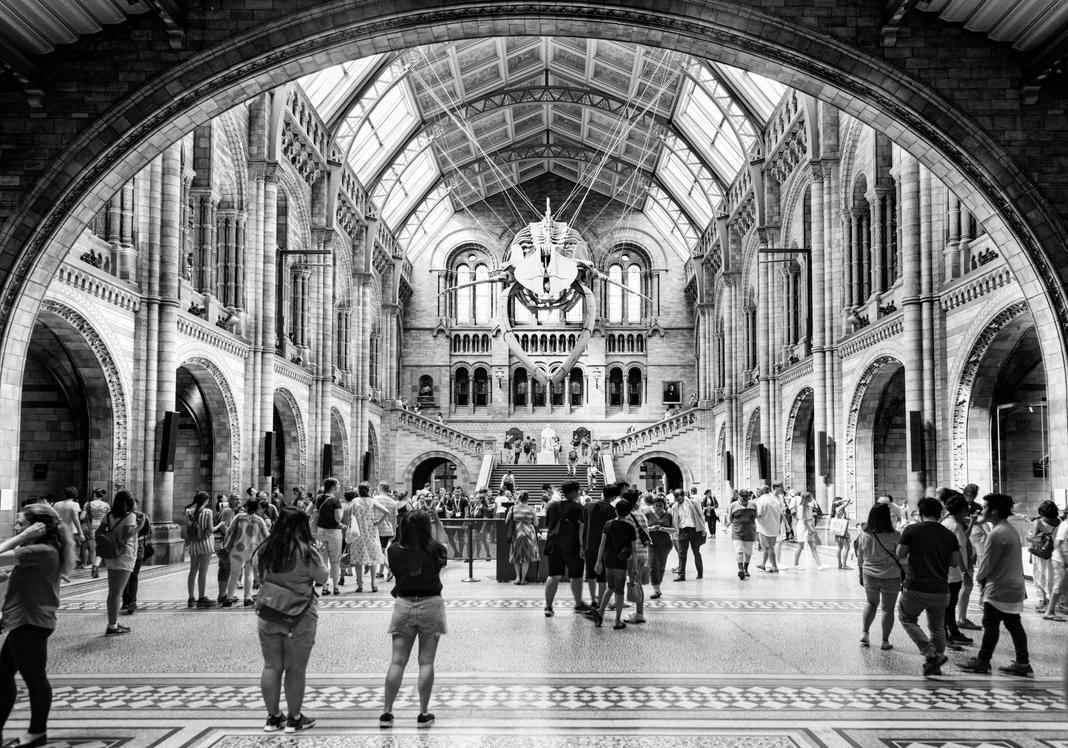 Natural History Museum II by CaveCanem42