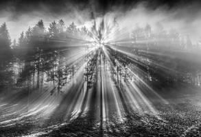 Lumen by CaveCanem42