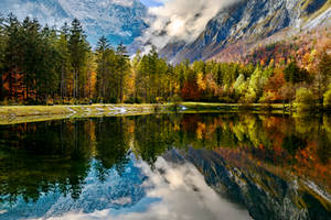 automne colore