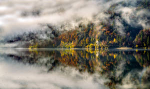 Pure Reflection