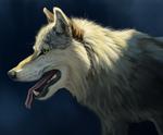 Fur Study
