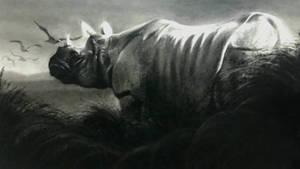 The Rhino King
