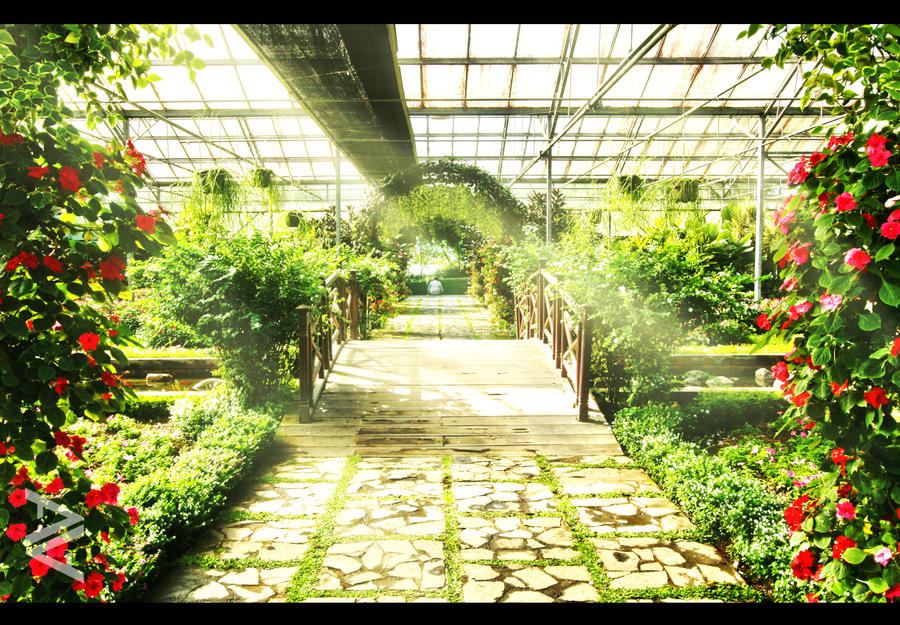 The Dutch Green House , Taman Bunga Nusantara by venario on DeviantArt