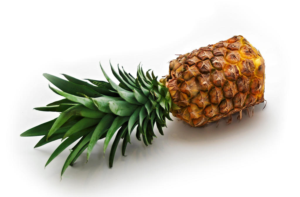 Rectangle Pineapple by benasayer