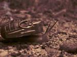 Snail Grenade