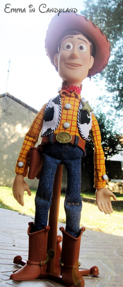 Toy Story Collection (depuis 2009) - Page 12 Woody_by_emma_in_candyland-d30714t