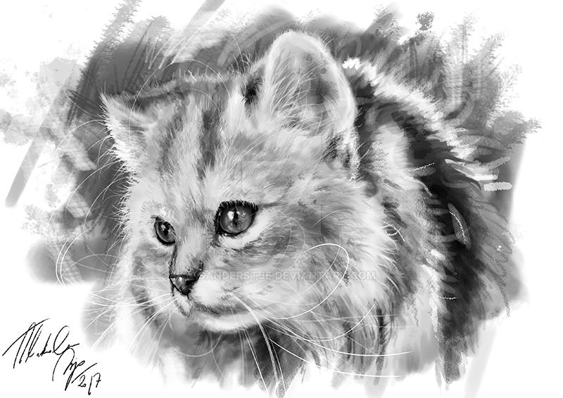 Digital portrait by sanderstje
