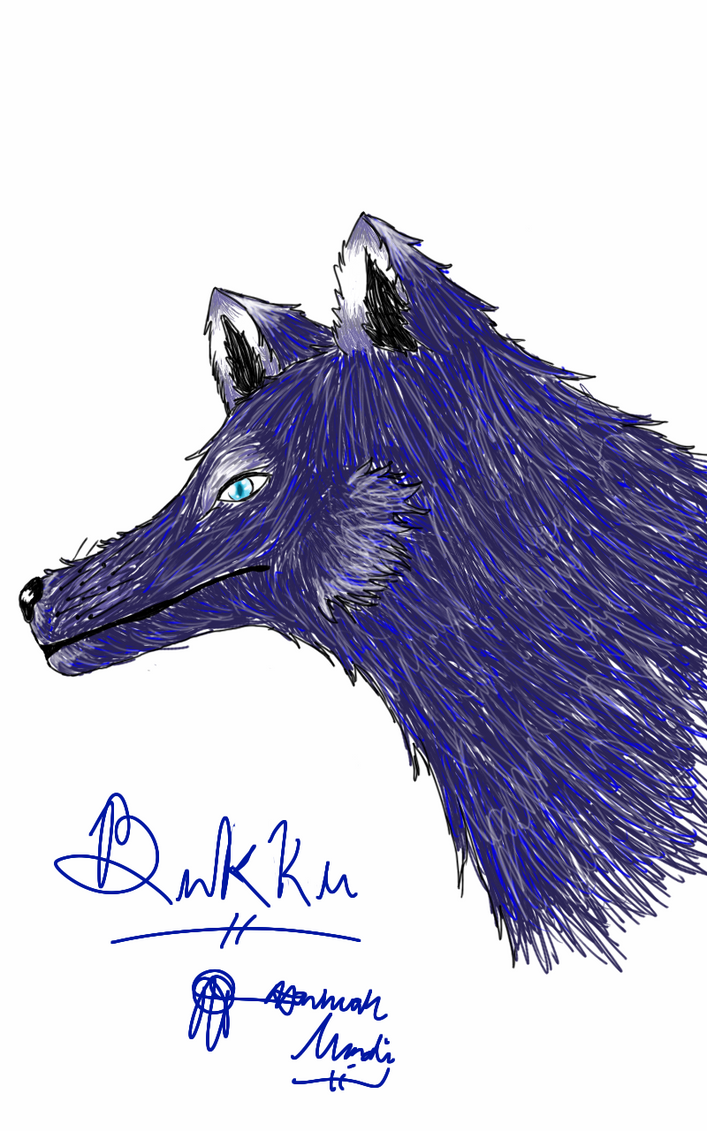 Bukku's face by Melomiku