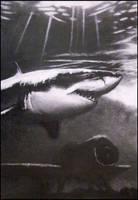 Great White Shark by FredrikEriksson1