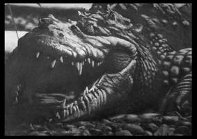 Crocodile by FredrikEriksson1