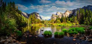 Plateau View - Yosemite NP