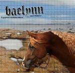 Baelynnfini