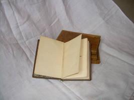 book 22 by ArabellaDream-stock