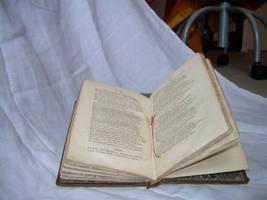 book 25 by ArabellaDream-stock