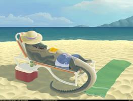 Crocos Summer Break