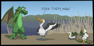 About Pelicans and Dragons