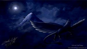 Midnight Fly