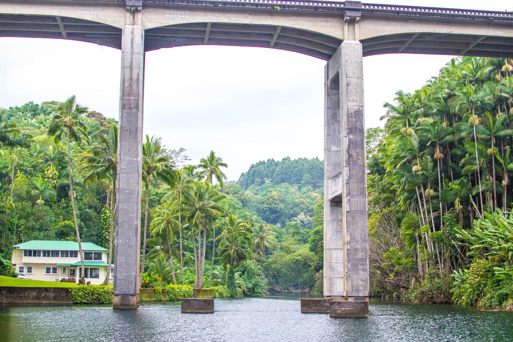 Hawaii River by Daggettgirl