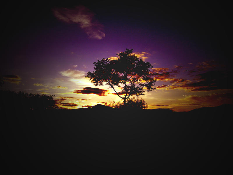 hermosa naturaleza by mindloader