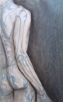 blue skelo