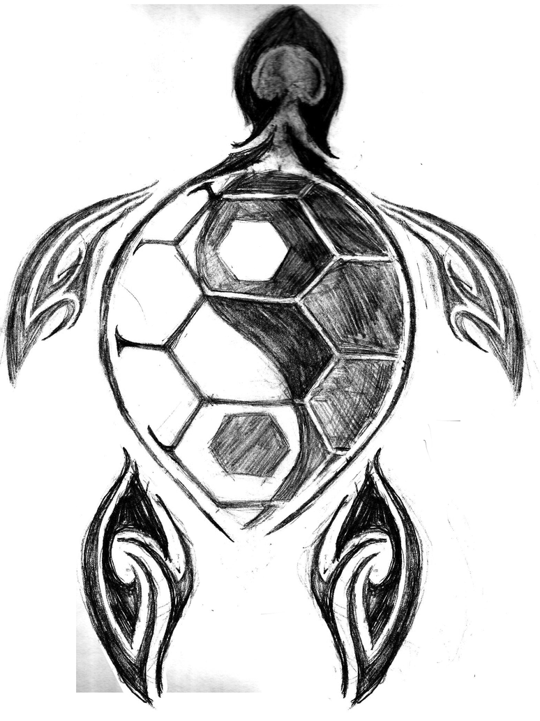 Turtle Line Drawing Tattoo : Turtle tattoo request sketch by moonwalker on deviantart