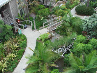 Palm Garden by wolviechick121