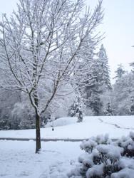 Snow Day by angelvelvet