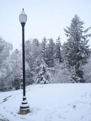 Real Life Narnia by angelvelvet