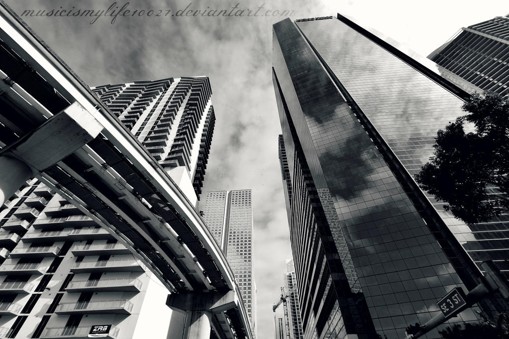 Lines and Curves by musicismylife10027