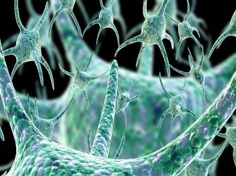 Mutagenic Virus